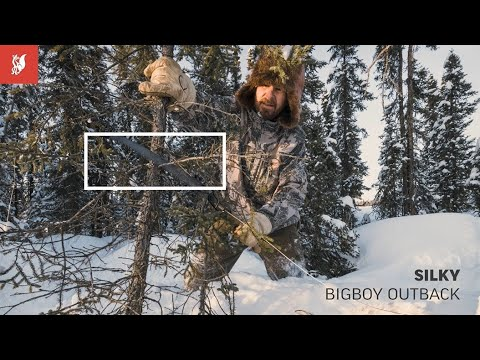 Silky Outback Series: BIGBOY